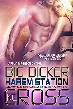 Big Dicker (Harem Station 3) by J.A. Huss.jpg
