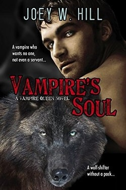 Vampire's Soul (Vampire Queen 14) by Joey W. Hill